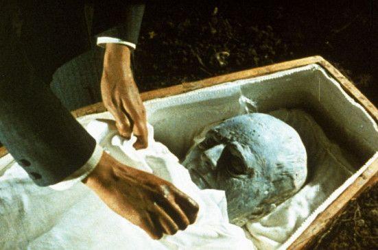 Das Meucheln geht weiter: schon wieder wurde eine versteinerte Leiche gefunden