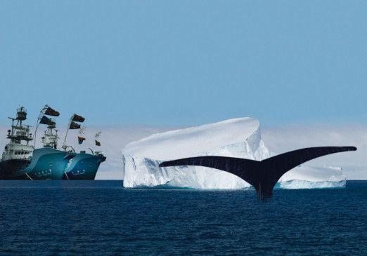Die Walfänger warten schon - Szene in der Anarktis