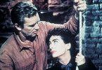 Wir sind hier nicht allein! Sterling Hayden und Joan Crawford