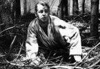 Unter Mordverdacht:  Alan Ladd