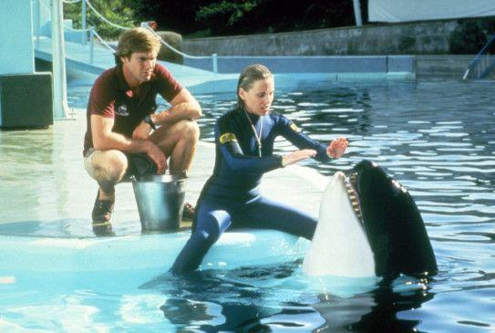 Mike Brody (Dennis Quaid) und seine Freundin Kathryn Morgan (Bess Armstrong) arbeiten im Vergnügungspark SeaWorld und ahnen noch nicht, in welcher Gefahr sie bald schweben werden