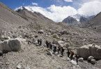 Tolle Landschaft! Unterwegs im Himalaya