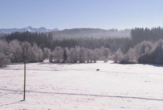 Eine Winterlandschaft, in der sich die Geschichte des Freitodes hätte abspielen können