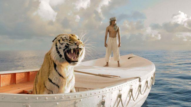 Freund oder Feind? Suraj Sharama mit Tiger