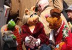 Kermit, Miss Piggy und Fozzy-Bär wollen Gonzo helfen ...