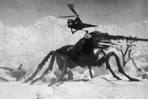 Das wird dein letzter Flug! Wenn Ameisen aggressiv  werden...