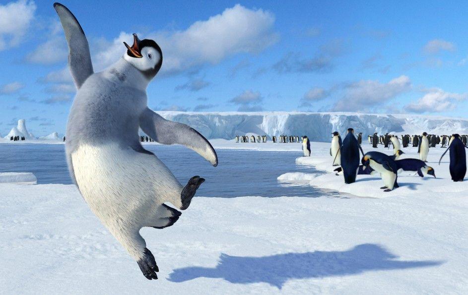 Hier steppt der Pinguin! Alle singen, nur einer tanzt