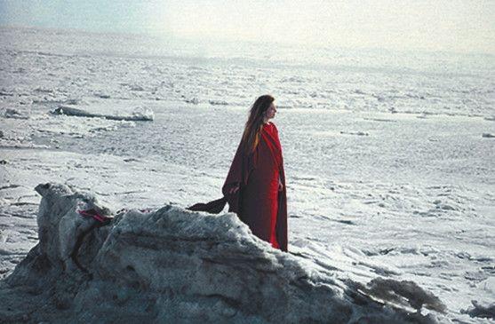Auch Sally (Tilda Swinton) bekommt die eisigen Landschaften zu spüren