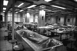 Sieht nicht gerade appetitlich aus: aufgebahrte  Leichen warten auf ihre Sezierung