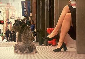 Die Frau entzückt durch ihre Beine...