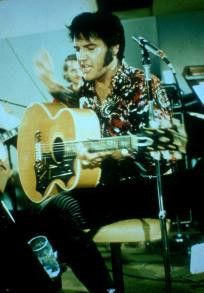 Und noch schnell ein Liedchen geträllert! Elvis in  Aktion