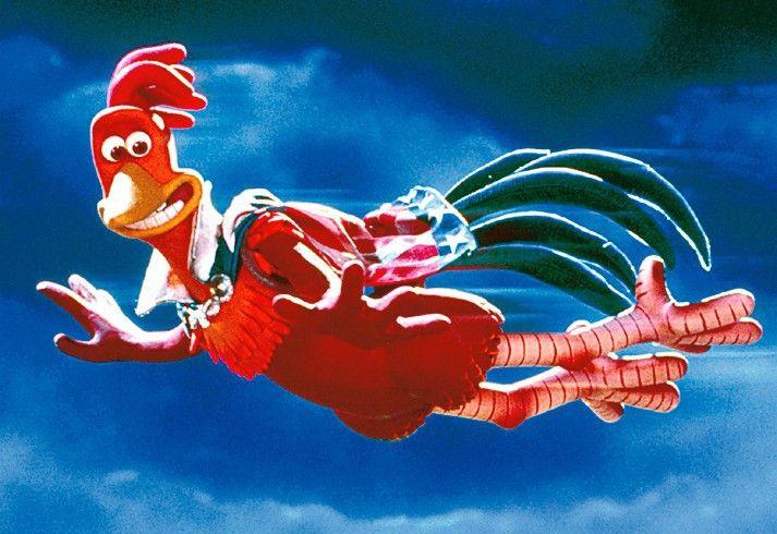 Fliegt, Hennen, fliegt! Hahn Rocky gibt Flugstunden