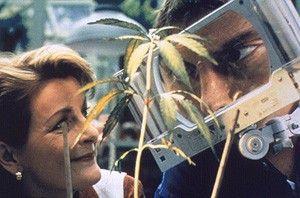 Na, ob aus dem Pflänzchen noch was wird? Brenda  Blethyn und Craig Ferguson