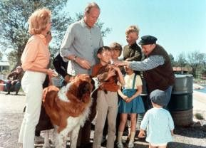 Das ist aber eine überaus lustige Gesellschaft: Familie Melchersson in  den Ferien