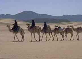 Mit den Tuareg in den Weiten der Sahara unterwegs