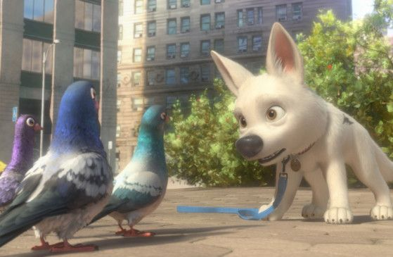 Was erzählen die Tauben da? Bolt wundert sich