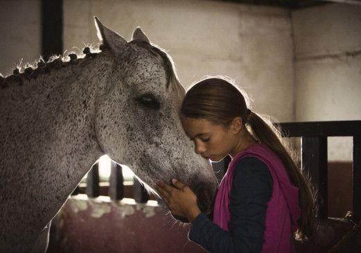 Was für ein liebes Tier! Klara (Rebecca Plymholt) mag das Pferd Star