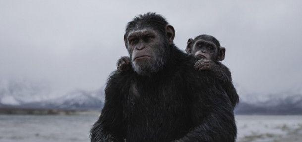 Caesar (Andy Serkis, links) will unter allen Umständen seine Familie und seinen Stamm beschützen.
