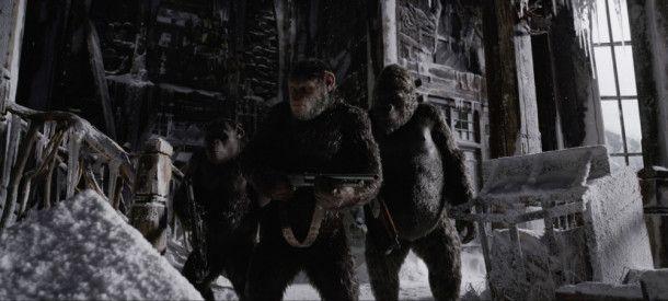Zur Not mit Waffengewalt: Die Affen wollen endlich ihre Ruhe.