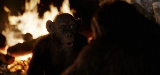 Auf ihrer Reise trifft die Gruppe auf einen ehemaligen Zoo-Schimpansen.