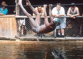 Den Alligator wird's freuen: Mittagsmahl am Seil  - entweder Hähnchen oder Hintern!