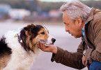 Na du bist ja ein ganz Lieber! Stubbe (Wolfgang Stumph) als Tierfreund
