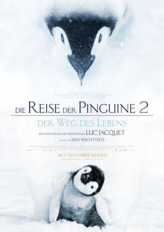 """Luc Jacquet beeindruckt in seinem neusten Dokumentarfilm """"Die Reise der Pinguine 2"""" mit spektakulären Unterwasseraufnahmen."""