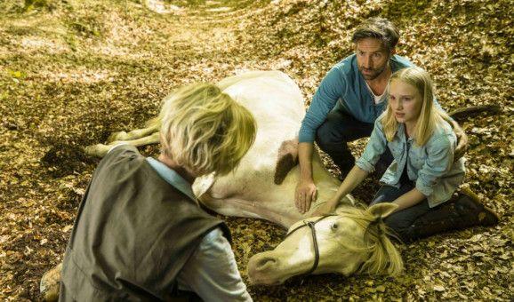 Gunnar Thorsteeg (Benjamin Sadler) und Wendy (Jule Hermann) bangen um Pferd Dixie, das unter einer schweren Kolik leidet.