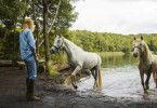 Wendy (Jule Hermann) staunt, dass es Dixie gelingt, die ängstliche Stute Penny ins Wasser zu locken.