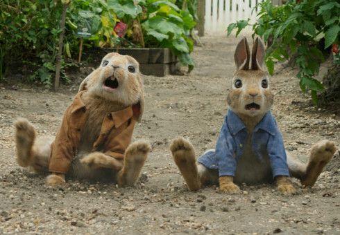 Peter Hase (rechts) und sein Cousin Benjamin wildern nur allzu gerne in Nachbars Gemüsegarten.