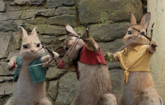Die renitenten Hasen beschießen Thomas mit Brombeeren, worauf dieser höchst allergisch reagiert.