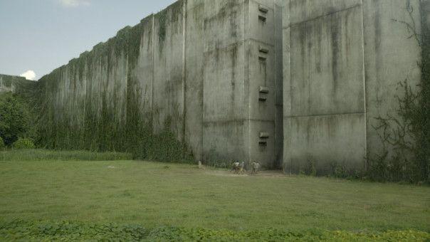 """Bilder aus """"Maze Runner - Die Auserwählten im Labyrinth"""""""