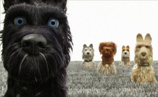 Chief (links) und den anderen Alpha-Dogs helfen dem resoluten Jungen Atari dabei, seinen Leibwächterhund Spots zu finden.