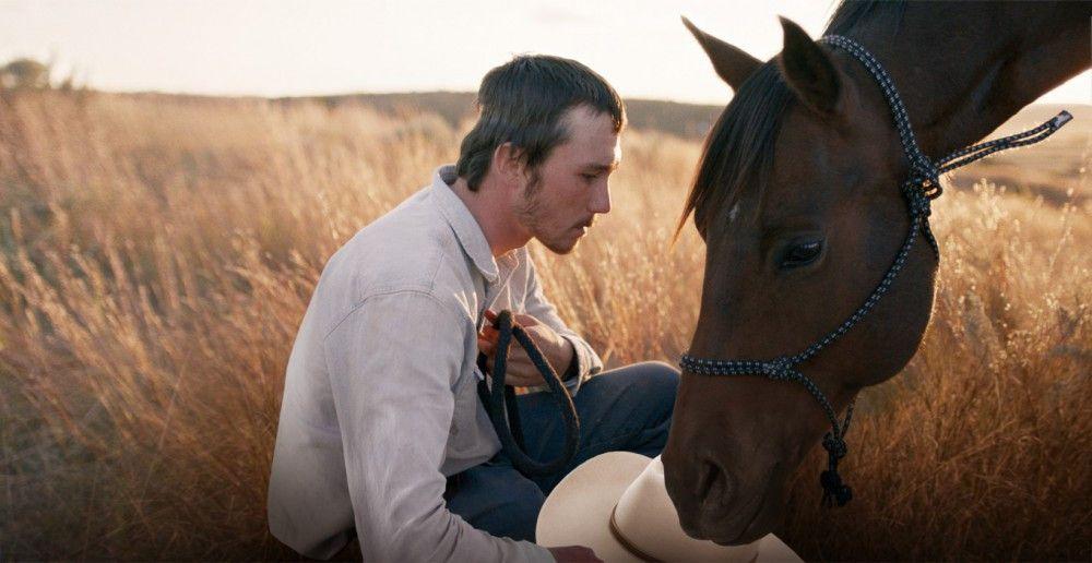 Brady (Brady Jandreau) zähmt den als unreitbar geltenden Hengst Apollo.