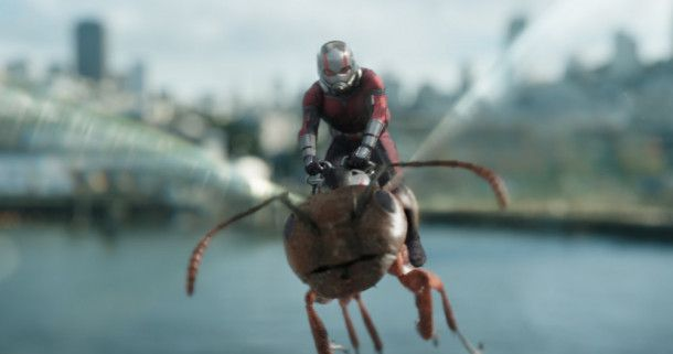 "Motiv aus ""Ant-Man and the Wasp"""