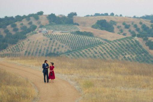 Auf der Flucht vor der unerträglich fröhlichen Hochzeitsgesellschaft treffen Frank (Keanu Reeves) und Lindsay (Winona Ryder) einen Puma, der sie zum Sex überredet.