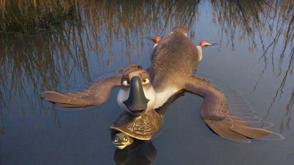 Während sein Schwarm bereits Richtung Süden zieht, bleibt der tollkühne Peng zurück.