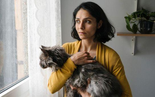 Mina (Pegah Ferydoni) kauft eine Katze, ohne Kian zu fragen.