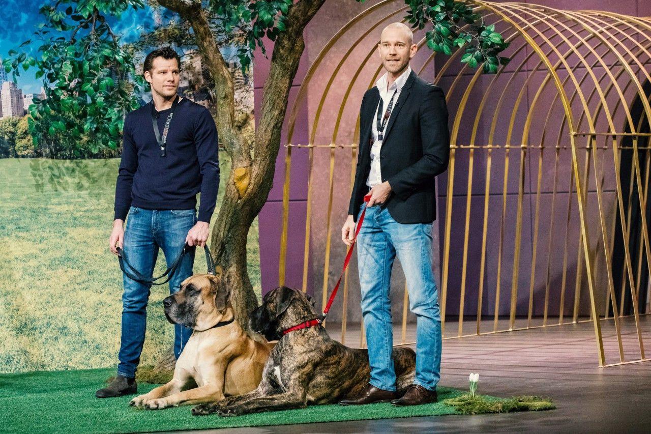 """<p><b>Die Gründer und ihr Produkt</b>: Jérôme Glozbach de Cabarrus und Tim Ley präsentieren das Hundeleinensystem """"Goleygo"""". """"Goleygo"""" hat den üblichen Karabinerhaken der Hundeleine durch ein innovatives Magnet-Rast-Verschlusssystem ersetzt, was schnelles und sicheres An- und Ableinen mit nur einer Hand ermöglicht.<p><b>Der Wunsch</b>: 500.000 Euro für einen Firmenateil von 25,01 Prozent.</p> <p><b>Der Deal</b>: Frank Thelen und Ralf Dümmel tun sich zum ersten Mal zusammen und investieren 500.000 Euro für 35 Prozent.</p>"""
