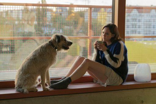 Auch auf den Hund gekommen: Die von ihrem Freund sitzengelassene Ella (Emily Cox) holt sich den Mischling Bozer aus dem Tierheim.