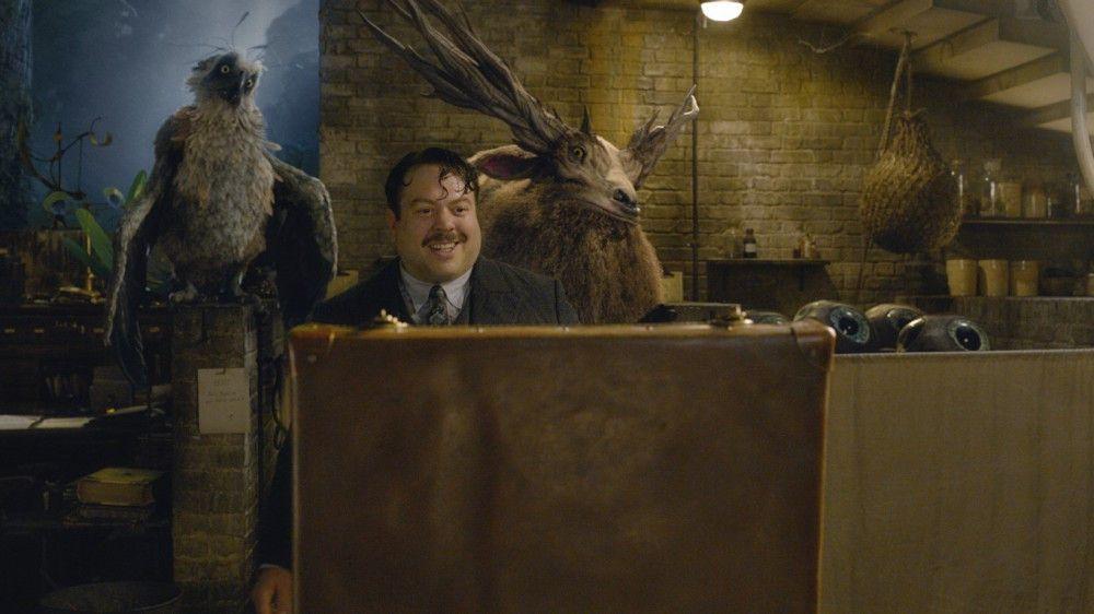 Jakob Kowalski (Dan Fogler) unterstützt Newt, wo er kann.
