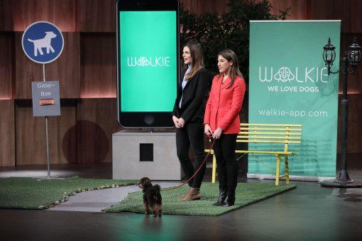"""Kaum eine Folge von """"Die Höhle der Löwen"""" ohne Hunde im Studio. Diesmal präsentieren Lisa Jedlicki (25) und Anna-Alexia Hoffmann (28) ihre Gassie-Geh-App """"Walkie"""", über die man Hundesitter finden und direkt buchen kann."""