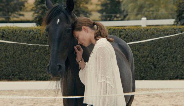 Lou (Leia Holtwick) versucht, den traumatisierten Hengst Cagliostro zu verstehen und ihm mit sanften Methoden zu helfen.