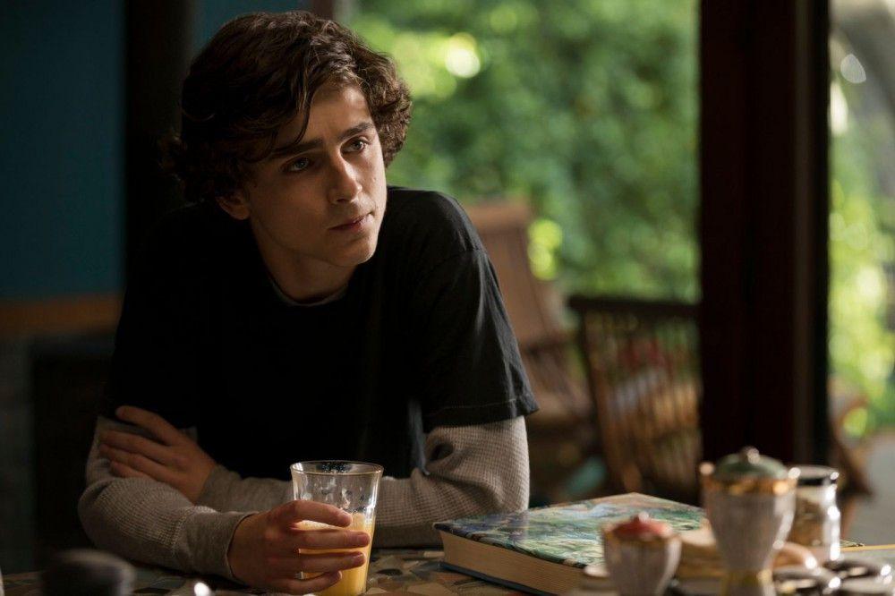 """Für seine Rolle in """"Beautiful Boy"""" erhielt Timothée Chalamet eine Golden-Globe-Nominierung."""