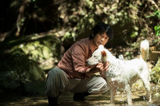 Tomo (Masatoshi Nagase) lebt zurückgezogen im Wald.