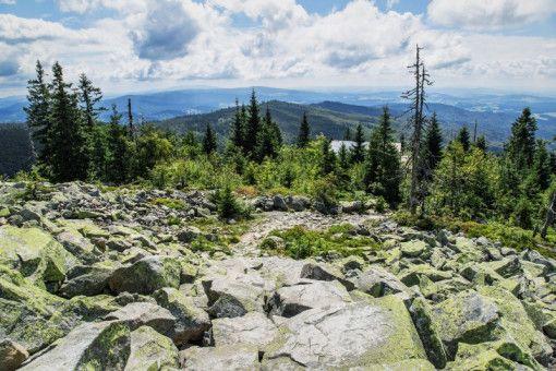 Der Bayerische Wald gilt als größtes Waldgebiet Europas.