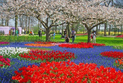 Blühende Schönheiten: Über sieben Millionen Blumenzwiebeln verwandeln den Frühlingspark in ein Paradies für Nase und Augen.