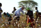 In Tansania lässt Textilingenieur Patrick Hohmann Biobaumwolle produzieren.
