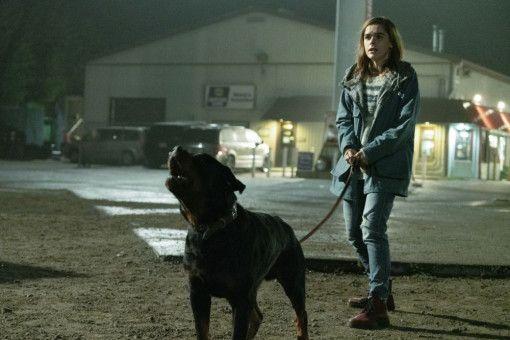 Allys (Kiernan Shipka) Hund hat für die Monster nicht viel übrig. Dass bellen keine Lösung ist, wird er noch am eigenen Leib erfahren.