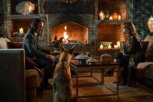"""Noch sitzen sie gemütlich am Kaminfeuer. Aber Keanu Reeves und Halle Berry haben nicht umsonst monatelang trainiert, um für """"John Wick: Kapitel 3"""" in Form zu kommen."""